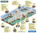 Проектирование, поставки оборудования, монтаж и обслуживание СКС. Объединение зданий в единую информационную систему.
