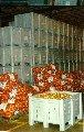Овощехранилище, фруктохранилище, склад морепродуктов, холодильник рыбы, мяса. Строительство, проектирование, бизнес-план