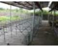 Проектно-строительные работы в сельском хозяйстве.