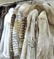 Чистка меховых изделий, химчистка шуб с натурального меха лисы, бобра, ондатры, норковая и другие в салоне-ателье Горностай, Киев