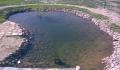 Проектирование и строительство садовых водоемов