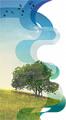 Разработка проектов ПДС, ОВОС, норм водопотребления и водоотведения, разрешения на спецводопользование