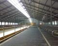 Строительство коровников, гаражей, складов и зернохранилищ от 370грн Киев