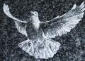 Гравирование по камню, стеклу, металлам, пластикам и др. поверхностм, фотогравировка Киев