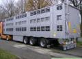 Перевозки скотовозом по территории Украины и за её рубежом (страны СНГ, Западной Европы, Скандинавии, Прибалтики, Азии),Самые лучшие цены