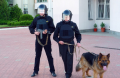Охрана общественного порядка и безопасность