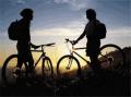 Организация экскурсий (пешеходных, авто, велосипедных)