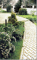 Преимущества для заказчика исполнения работ по озеленению и уходу за садом предприятием