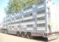 Transportation of animals by the cattle trucks abroad to the countries of Europe, Asia