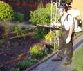 Борьба с вредителями растений, Украина Киев