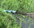 Устройство водоемов, устройство искусственных водоемов Киев, устройство водоема на участке,  устройство водоема в саду, устройство водоема на даче