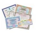 Разрешительная и лицензионная деятельность