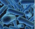 Очистки воды, Очистка воды от марганца и сероводорода