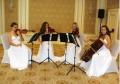 Живая музыка на церемонии