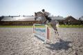 Показательные выступления, выездка, конкур, обучение лошадей, дрессура лошадей, зеленый туризм, клуб зеленого туризма