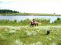 Конные прогулки. Одесская область, Великодолинское, Большая Долина