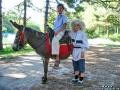 Организация праздников с участием лошадей, пони и осликов.Одесская область, Великодолинское, Большая Долина