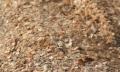 Брикетирование древесных стружечных отходов
