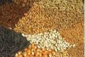 Сортировка зерновых культур по цвету