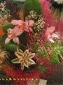 Букет `Фламинго`