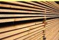 Сушим древесину