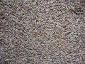 Анализ зерна и комбикормов на микотоксины