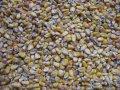 Определение сырого протеина в кормах и фуражном зерне