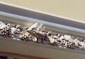 Декорирование лепнины и архитектурных элементов