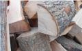 Доставка дров ясеня цена