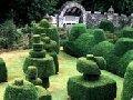 Услуги по благоустройству и озеленению
