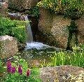 Услуги по созданию водоемов и водопадов