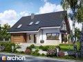 Проектирование Дом в айдаредах Archon