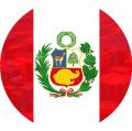 Морские контейнерные перевозки в Черноморском бассейне из Перу