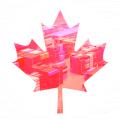 Контейнерные перевозки из Канады