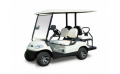Lease of golf cars and electro golf of cows