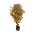 Аренда Золотое дерево