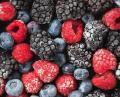 Şok Evaporatör gıdalar sebzeler, meyveler, çilek, et, balık, kümes hayvanları, hazır yiyecek köfte, köfte