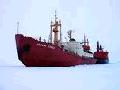 Sea freight (морские перевозки) - доступная по цене перевозка по морю для грузов в контейнерах.