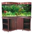 Продажа и изготовление аквариумов! Весь спектр услуг по аквариумистике и аквадизайну!