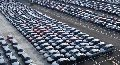 Customs clearance (customs clearance) of cars