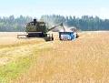 Перевозка зерна по Украине