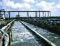 Sewage treatmen