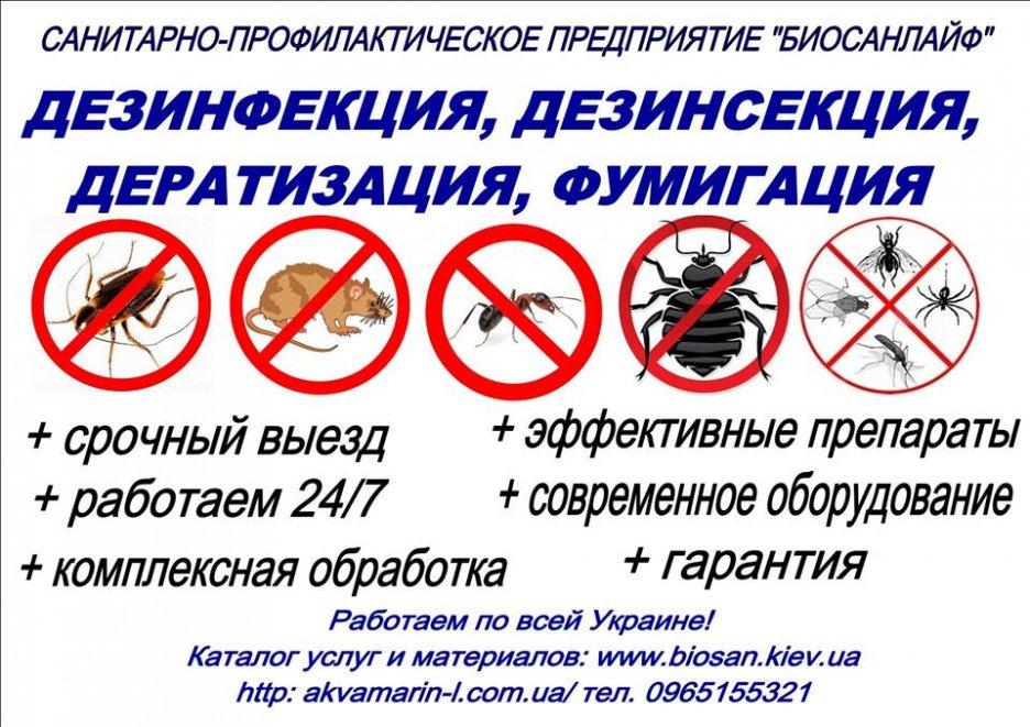 "СПП ""БИОСАНЛАЙФ"" pest control service"